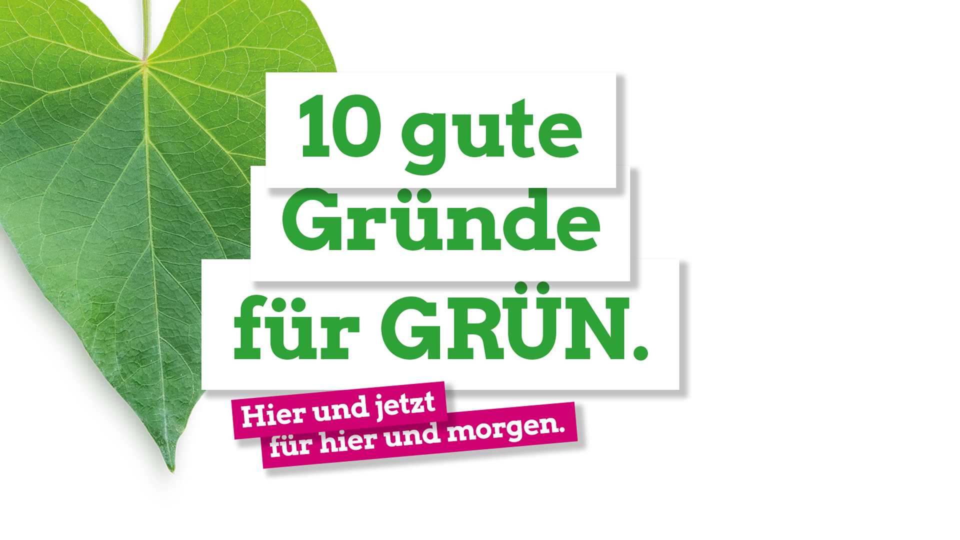 Landtagswahl 2019 – 10 gute Gründe für GRÜN.