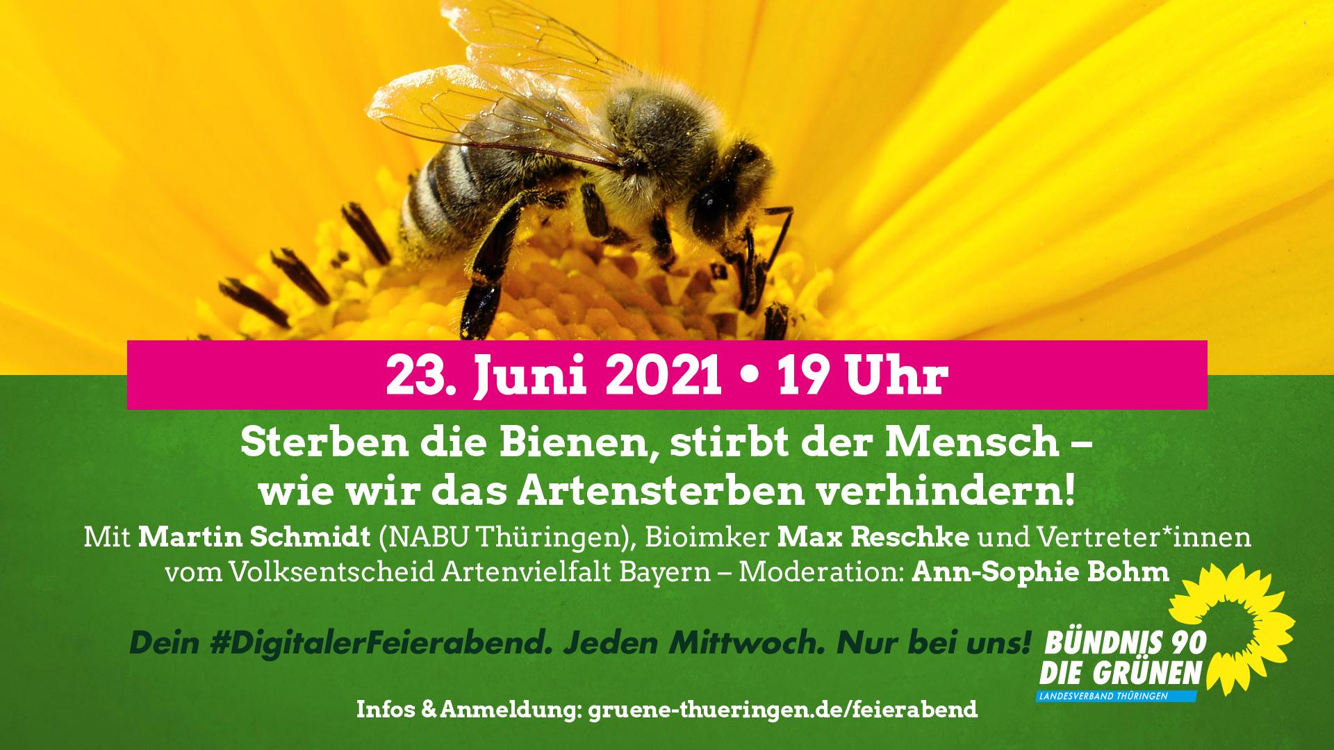 """""""Sterben die Bienen, stirbt der Mensch – wie wir jetzt das Artensterben verhindern!"""""""