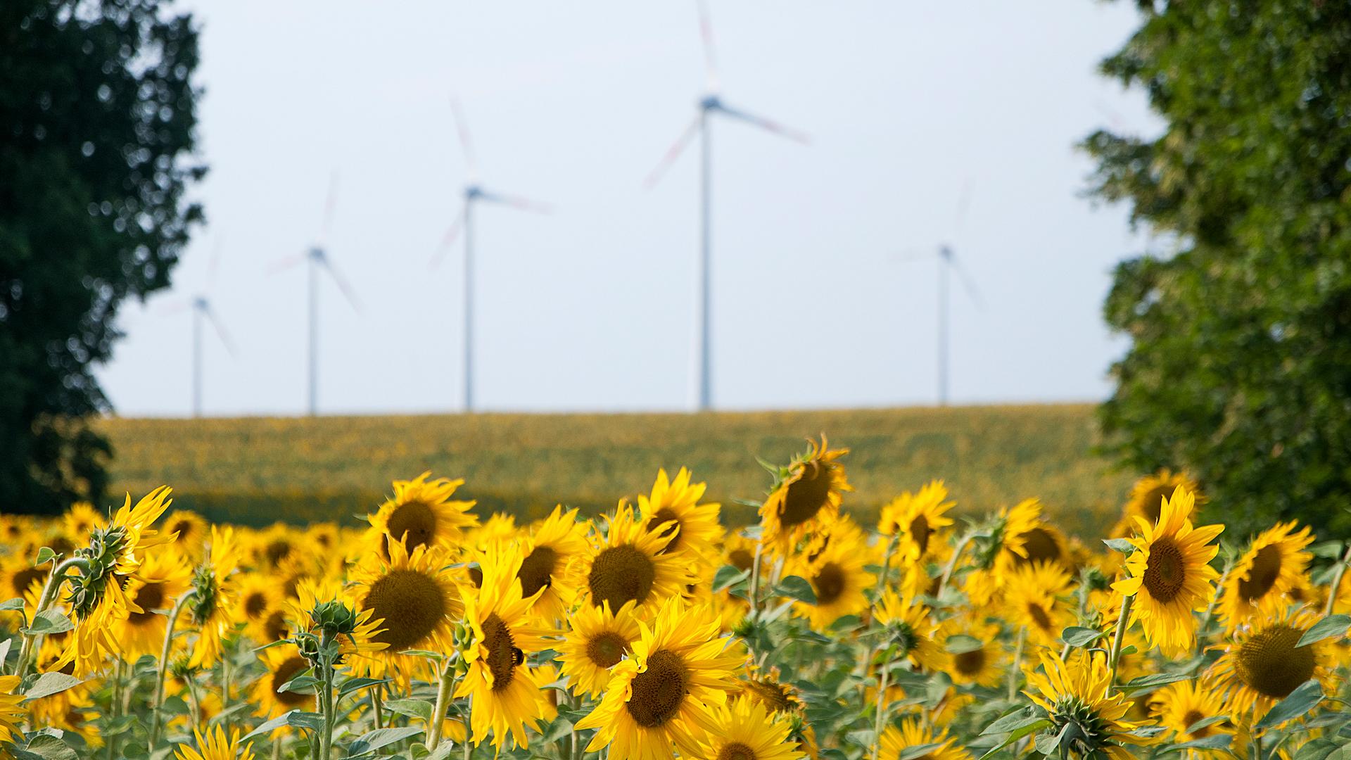 Für Klima, Umwelt und Natur